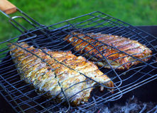 Fish on the grill. Royalty Free Stock Images