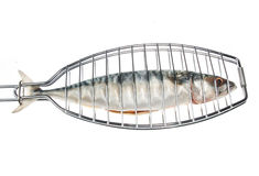 Fish in grill Stock Image