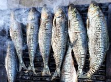 Fish grill Royalty Free Stock Photo