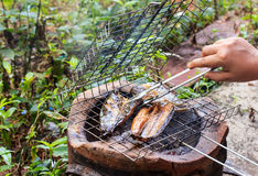 Fish grill Royalty Free Stock Photography