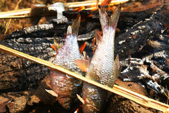 Fish grill on fire Stock Image