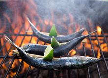 Fish on grill Stock Photo