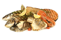 Fish grill meats. On a white background Stock Image