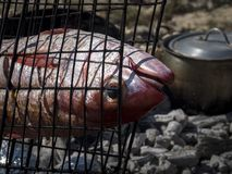 Fish Grill, Nosy Ve Island royalty free stock images