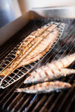 Fish on the grill Royalty Free Stock Images