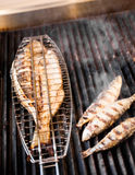 Fish on the grill Royalty Free Stock Photos