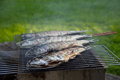 Fish grill. There are fish on the grill and grilled. An raw freshwater fish on the grill. Cooked in traditional style. Cooking of salted fish on a grill stove royalty free stock photography