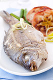Fish grilled Stock Photo