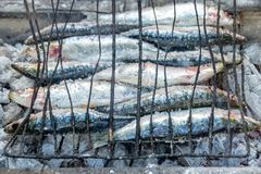 Fish grilled on an open BBQ in Agadir, Morocco stock images