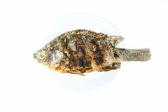 Fish grilled with salt Royalty Free Stock Image