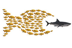 Fish group chasing shark. Concept unity is strength, 3d illustration Stock Image