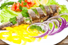 Fish hake baked with vegetables Royalty Free Stock Photos