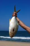 Fish Hand Stock Photo