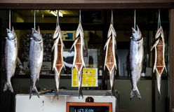Fish hanging at butcher shop. Cleaned Fish hanging to dry in market Royalty Free Stock Photo