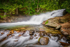 Fish Hatchery Falls Canada Royalty Free Stock Images