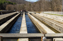 Fish Hatchery - USA Royalty Free Stock Photos
