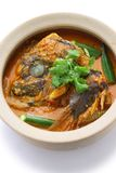 Fish head curry. Singaporean cuisine, on white background Stock Photography