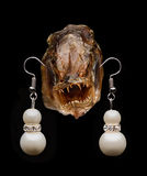 Fish head with earrings Royalty Free Stock Image
