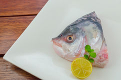 Fish head Stock Images