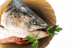 Fish head on a plate Royalty Free Stock Photos