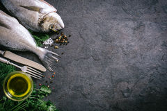 Fish head and tail Stock Photography