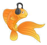 Fish in headphones Stock Image