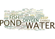 Fish Health In Hot Summer Heat Word Cloud Concept Royalty Free Stock Image