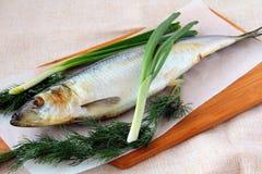 Fish herring Royalty Free Stock Photography