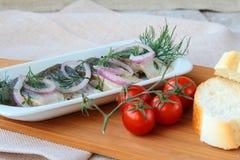 Fish herring Stock Photos
