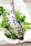 Fish herring on board with parsley Stock Photography