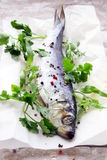 Fish herring on board with parsley Royalty Free Stock Photo