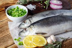Fish herring with red onion, lemon and spices stock photo