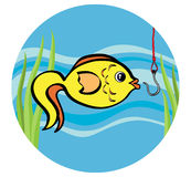 Fish on a hook. There is a fish moving to a hook Stock Images