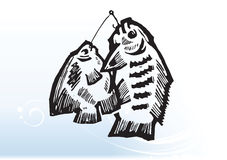 Fish on hooks. Illustrated sketch of two fish caught on fishing hooks, gradient blue and white background Royalty Free Stock Photos