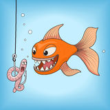 Fish hunts worm vector illustration. Cartoon orange fish hunts on a pink worm vector illustration. Fun, fishing, hook underwater Royalty Free Stock Images