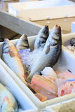 Fish on ice Royalty Free Stock Photo