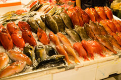 Fish on ice at fish market. Various fish at fish market royalty free stock photo
