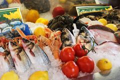 Fish on ice. With lemons and tomatoes Royalty Free Stock Images