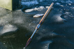Fish on ice, man on winter fishing, people on the ice of the fro royalty free stock photography