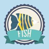 Fish icon design. Fish digital design, vector illustration 10 eps graphic Stock Image