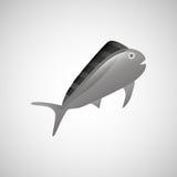 Fish icon design. Illustration eps10 graphic Royalty Free Stock Photos