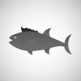 Fish icon design. Illustration eps10 graphic Royalty Free Stock Image