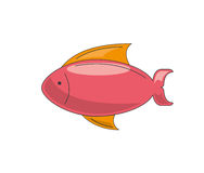 Fish icon  design. Fish icon design,  illustration eps10 graphic Royalty Free Stock Photography