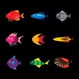 Fish icon, fish icon. Eps 10 Royalty Free Stock Photos