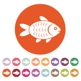 The fish icon. Fish symbol. Flat. Vector illustration. Button Set Royalty Free Stock Photo