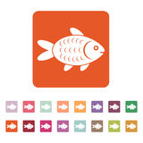 The fish icon. Fish symbol. Flat. Vector illustration. Button Set Royalty Free Stock Photography