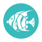 Fish icon graphic design. Vector illustration eps10 Stock Photo