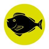 Fish icon graphic design Stock Image