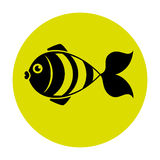 Fish icon graphic design. Vector illustration eps10 Stock Images
