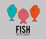Fish icon graphic design. Vector illustration eps10 Royalty Free Stock Photography